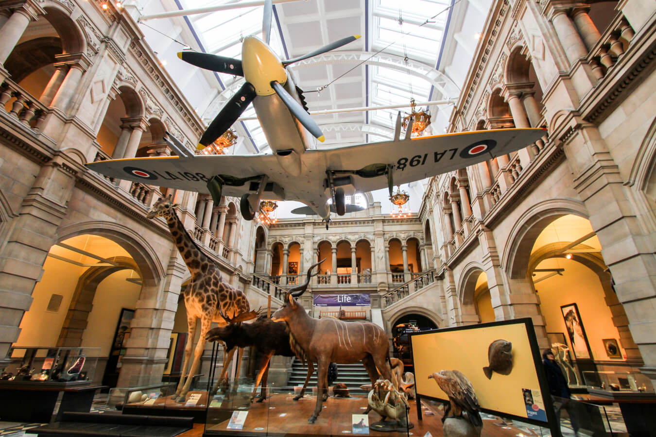 Five Must-See Glasgow Museums & Galleries